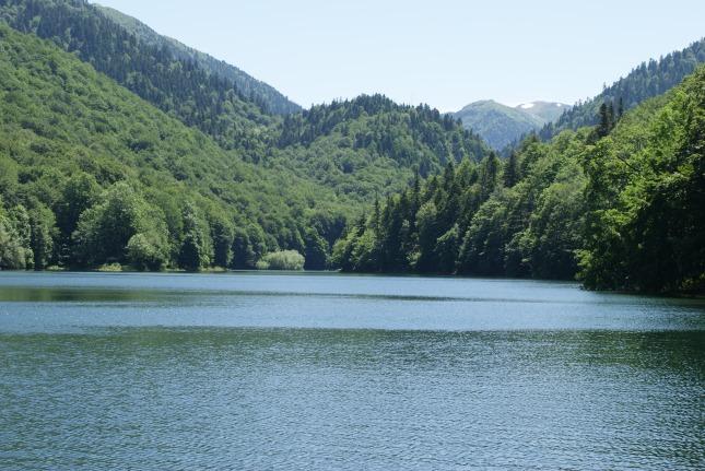 Biogradska Gora en été