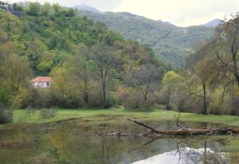 Rijeka Crnojevica