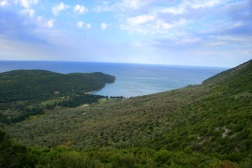Oliveraie d'Ulcinj (Valdanos)